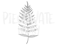 piegowate logo